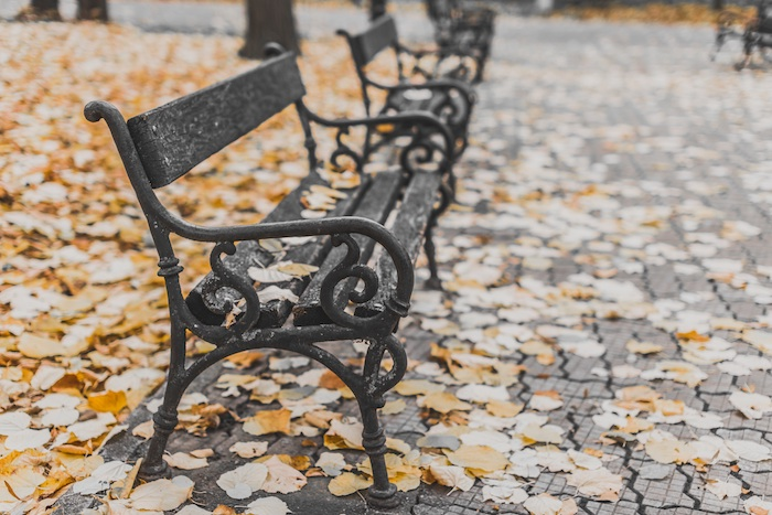 My Autumn Bucket List To Welcome In The New Season, park bench surrounded by leaves