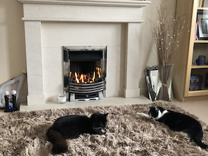 October 2018 Income & Profit Report, two of our cats enjoying the fire